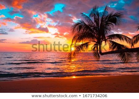 Gyönyörű naplemente tengerpart égbolt háttér nyár Stock fotó © tetkoren