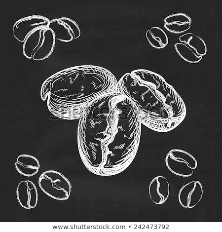 Grain de café icône craie dessinés à la main tableau noir Photo stock © RAStudio