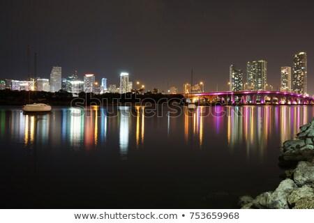 Miami · sziluett · éjszaka · panoráma · panorámakép · kép - stock fotó © lunamarina