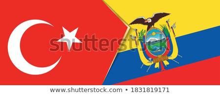 Турция Эквадор флагами головоломки изолированный белый Сток-фото © Istanbul2009
