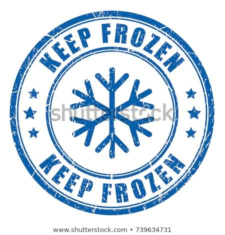 Logo congelado productos resumen vector Foto stock © butenkow