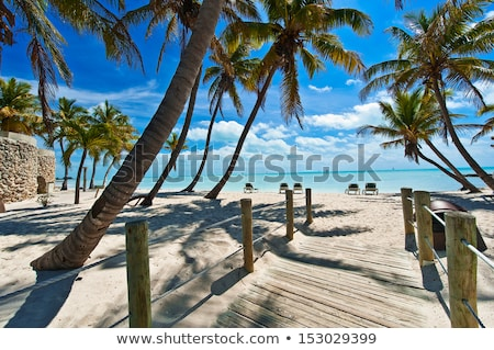 Florida · sleutels · snelweg · palmbomen · historisch - stockfoto © elenaphoto