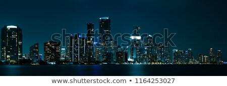 Miami sziluett éjszaka panoráma panorámakép kép Stock fotó © creisinger