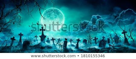 Kerkhof kraai grafsteen halloween hemel Stockfoto © hitdelight