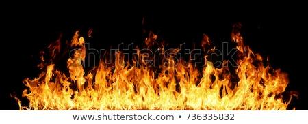 ardente · chamas · fogo · reflexão · preto · fronteira - foto stock © soleilc