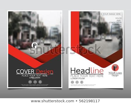 красный охватывать ежегодный докладе брошюра Flyer Сток-фото © ganpanjanee