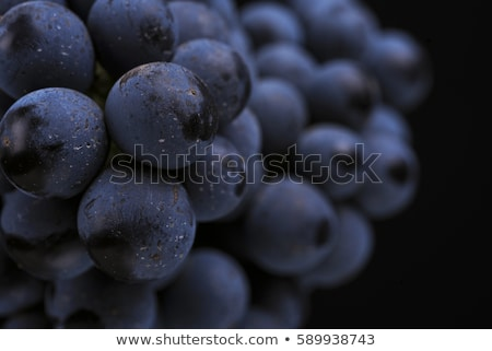 Close-up of ripe wine grapes Stock photo © mady70