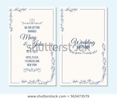 Blauw grens ontwerp trillend detail bloemen Stockfoto © hpkalyani