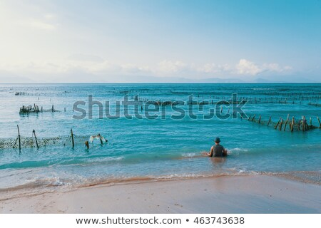 Dream beach, Algae at low tide and boy Stock photo © artush