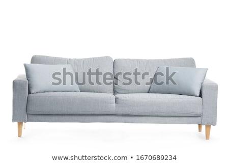 диван · изолированный · белый · моде · дизайна · Председатель - Сток-фото © zurijeta
