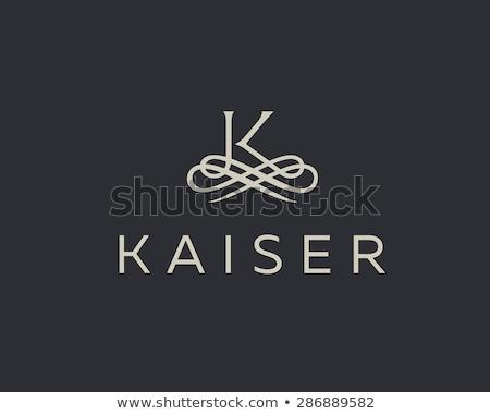 Clássico floral monograma projeto carta logotipo Foto stock © SArts