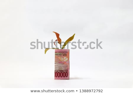 Indonesia rupiah  bank note on the leaves  Stock photo © CaptureLight