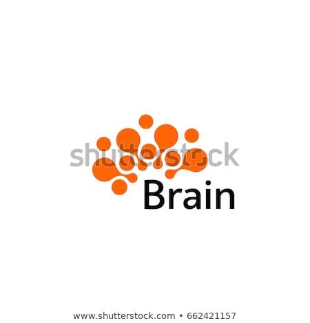 Brain round shape icon Stock photo © Tefi