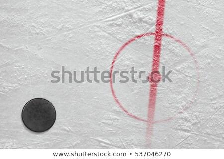 Hockey Puck Centre Stock photo © albund
