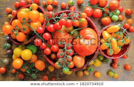 colorful tomatoes   redyellow orange harvest vegetable cooking conception stok fotoğraf © virgin