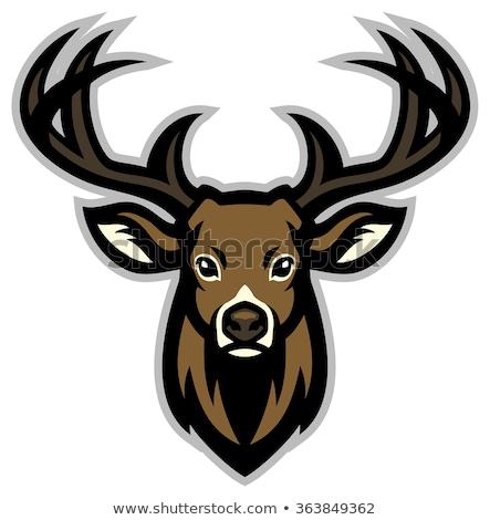 Cervo testa mascotte logo etichetta Foto d'archivio © masay256
