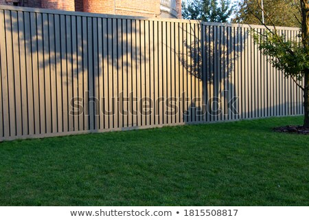 shadow of two people on grass Stock photo © IS2