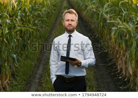 üzletember kukoricamező üzlet természet szabadság ül Stock fotó © IS2