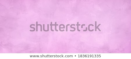 Lilac on plaster wall background Stock photo © kostins