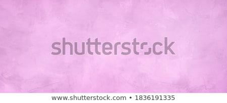 gipsu · tekstury · kilka · wektora · retro · tekstury - zdjęcia stock © kostins