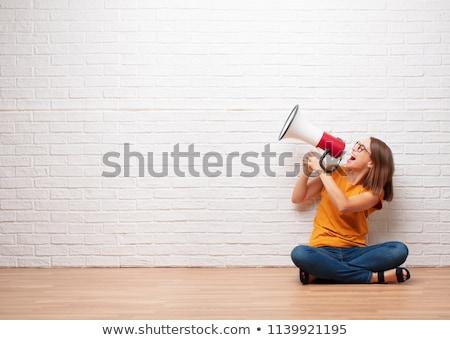 Nő megafon tiltakozás hirdetés pop art retro Stock fotó © studiostoks