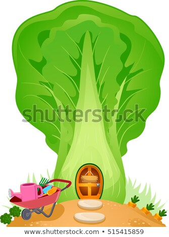 Fantasy House Cabbage Garden Stock photo © lenm