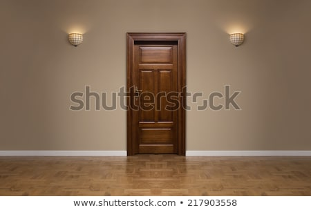 Wooden Door Stock photo © 2tun