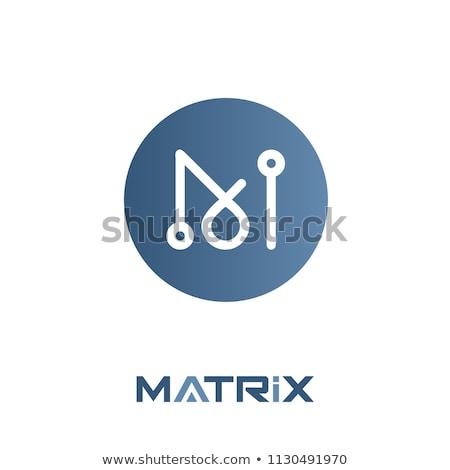 Foto stock: Matriz · vector · hombre · símbolo · icono · dinero