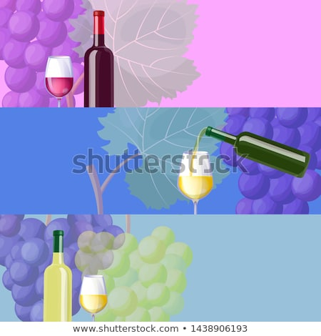 Wine Combinations and Classic Taste Promo banners Stock photo © robuart