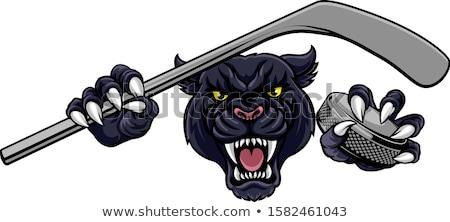 Bobcat Ice Hockey Mascot Stock photo © patrimonio