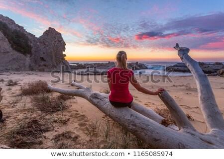 stunning beaches on the eurobodalla coast of australia stock photo © lovleah