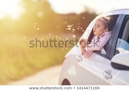 boldog · gyönyörű · lány · fúj · pitypang · gyönyörű · nő · homály - stock fotó © svetography
