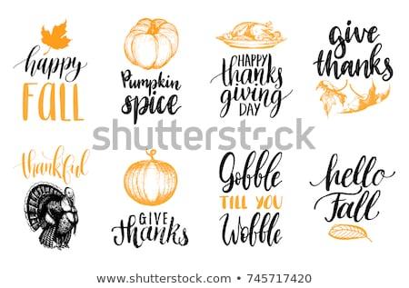 Merhaba sonbahar teşekkürler kart örnek manzara Stok fotoğraf © colematt