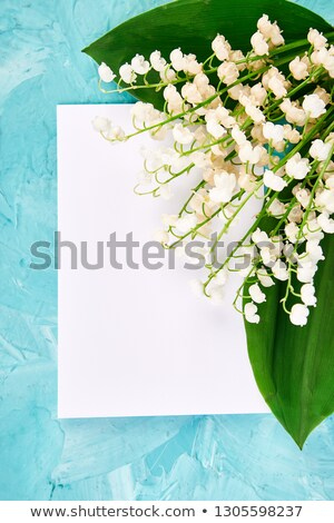 Bouquet of lily of the valley near postcard, empty paper. stock photo © Illia