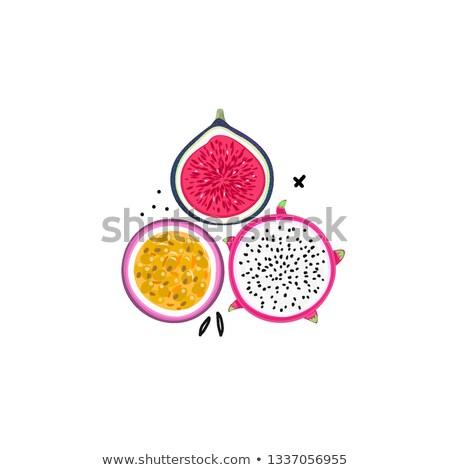 вектора изолированный тропические плодов страсти фрукты Сток-фото © user_10144511