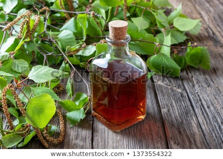 A bottle of birch tincture with young birch branches Stock photo © madeleine_steinbach