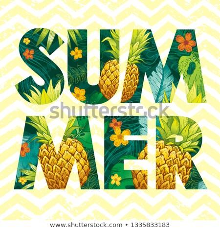 nyár · vásár · terv · napszemüveg · egzotikus · pálmalevelek - stock fotó © robuart
