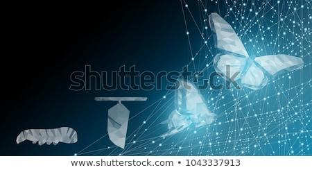 Woord digitale verandering business transformatie tekst Stockfoto © Mazirama