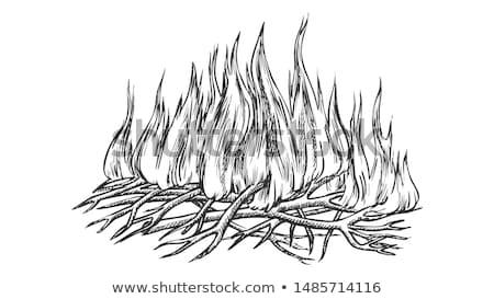 Traditional ardere camping incendiu monocrom vector Imagine de stoc © pikepicture