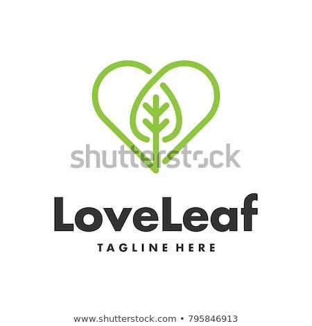 Hart bladeren decoratief natuur schoonheid Stockfoto © odina222