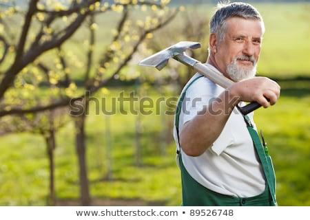 Portre kıdemli adam bahçıvanlık ev bahçe Stok fotoğraf © HighwayStarz