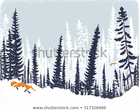 Hare and Winter Landscape, Forest with Pine Trees Stock photo © robuart