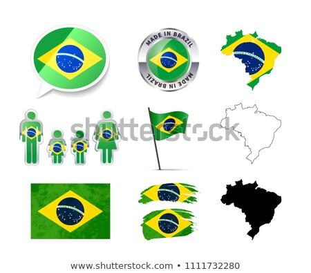 Grande conjunto Brasil infográficos elementos bandeiras Foto stock © evgeny89