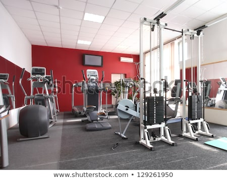 Training apparatus in gym hall. Stock photo © ruslanshramko