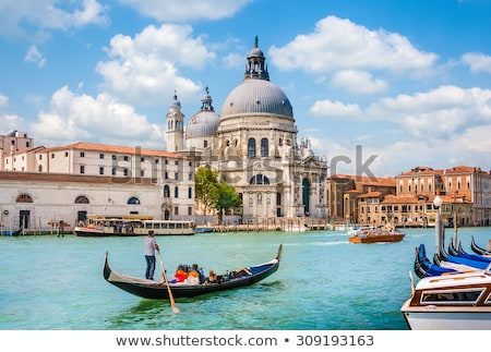 Panorama of Venice Grand Canal and Santa Maria della Salute church on sunset Stock photo © dmitry_rukhlenko