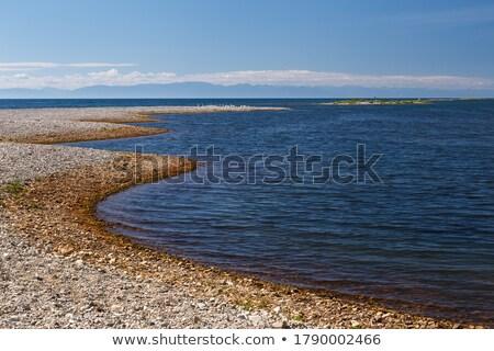Coastal line of lake Baikal. Summer landscape. Russia Stock photo © ISerg
