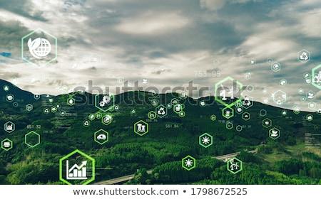 Устойчивое компьютер служба трава интернет технологий Сток-фото © leeser