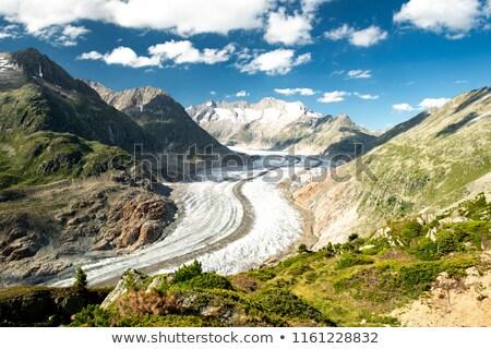 ледник · Альпы · Швейцария · Панорама · живописный - Сток-фото © vichie81