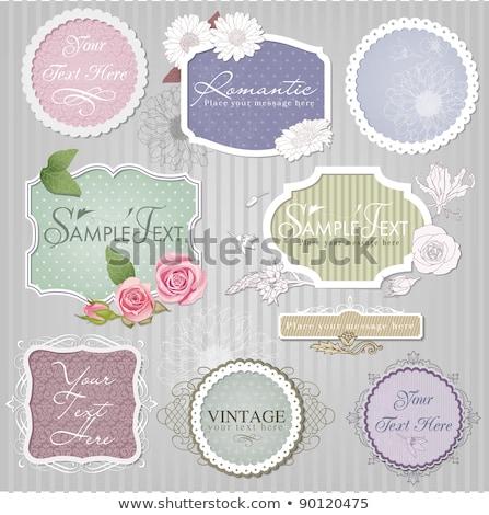 Vintage Rose Cosmetics Labels Set Stock photo © Kaludov