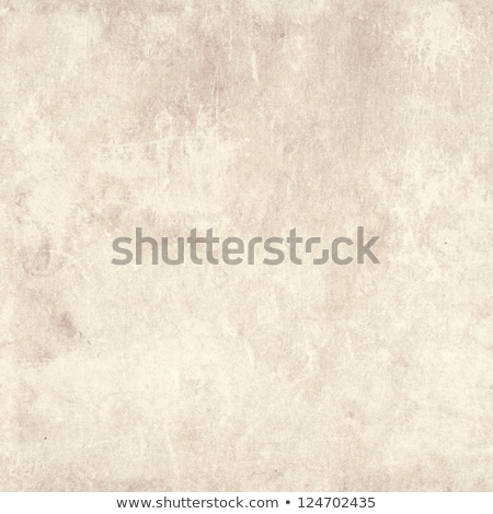 soil seamless texture stock photo © tashatuvango